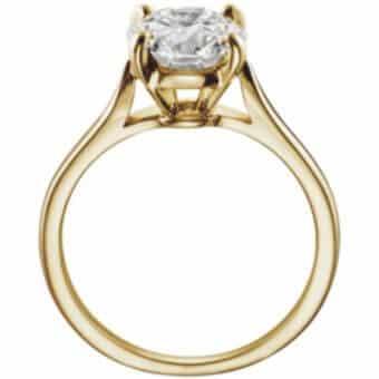 anillo de compromis svetlana petrov